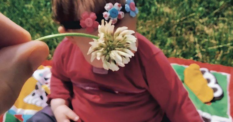 Carnet rose : un bébé pour Madame Origan !