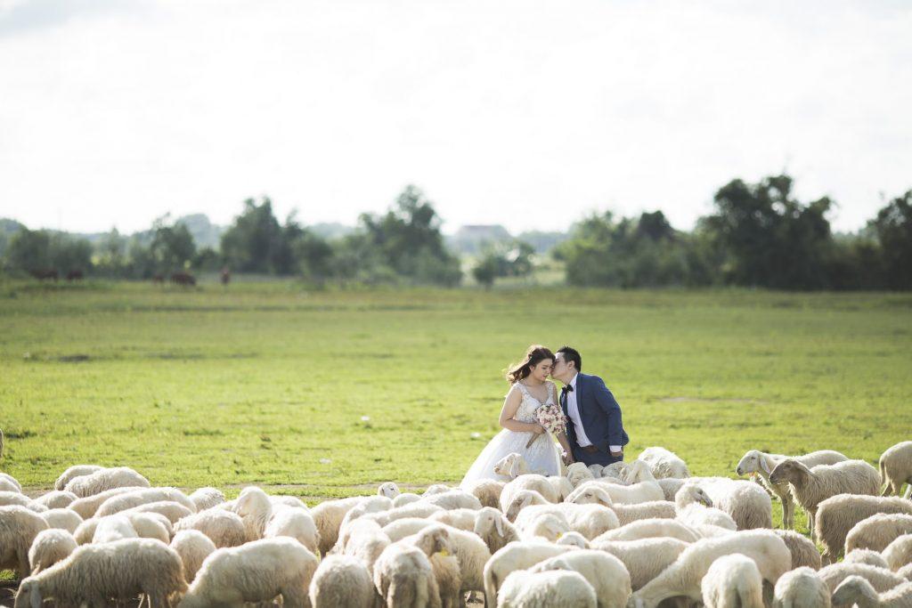 Les traditions insolites autour du mariage