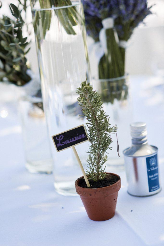 Idée pour mes cadeaux d'invités au mariage : des plants de romarin !!