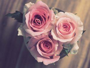 Noce de mariage rose